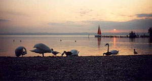 Lake Neusiedlersee is an enormous lake and the axis mundi for the Burgenland