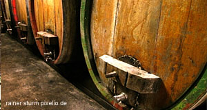 A Weinkeller or wine cellar in an Austrian vineyard near Vienna