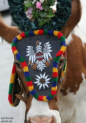 Tracht or Austrian Traditional Costume : Lederhosen, Dirndl Dress